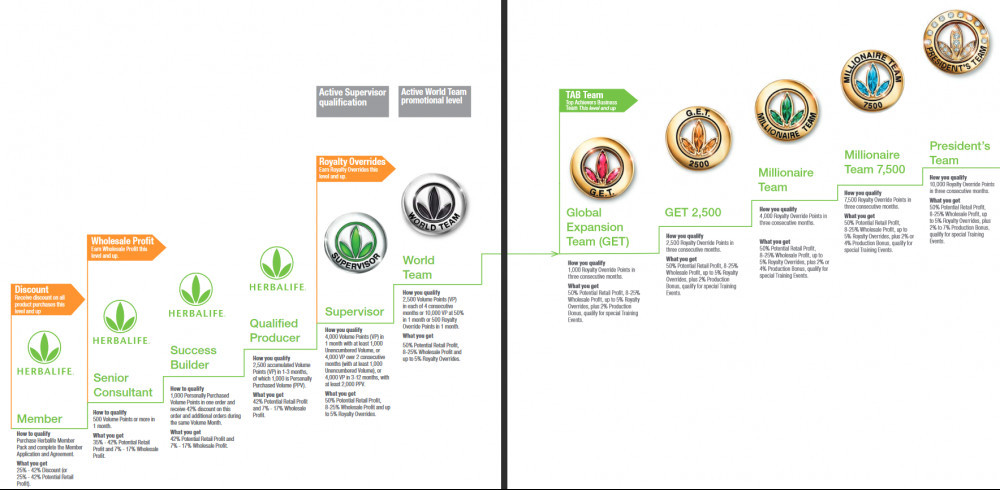 Different Levels at Herbalife