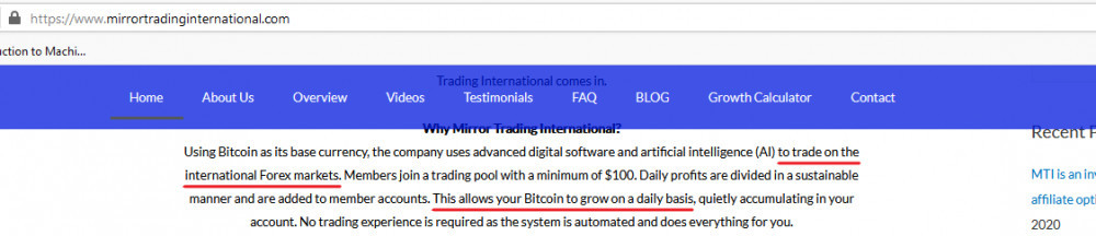 Mirror Trading International Forex or Cryptocurrency?